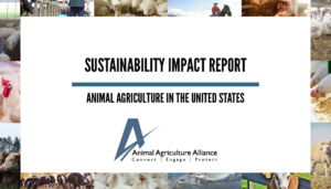 2021 Sustainability Impact Report